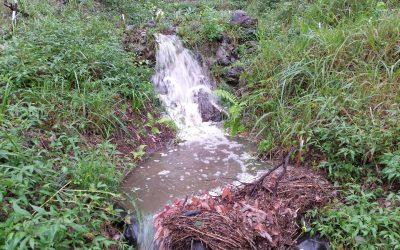 The Big Wet 2016 – 4th June 2016