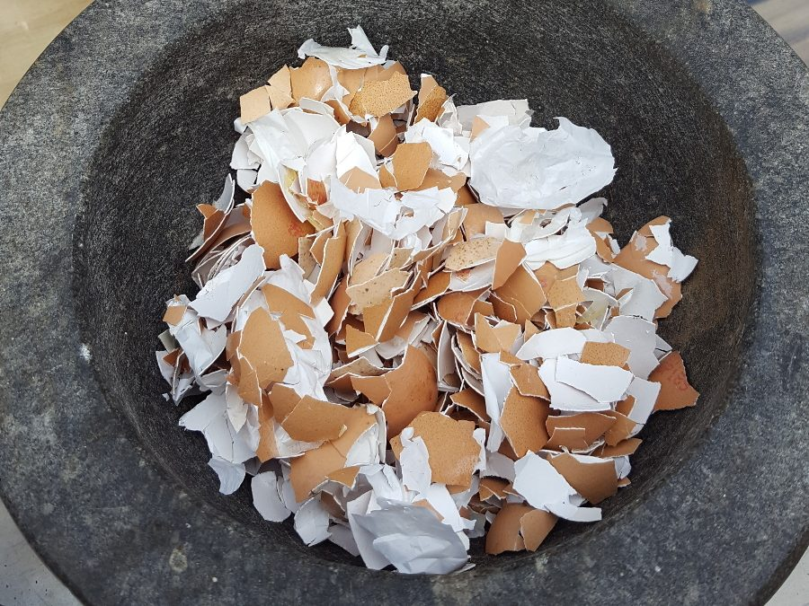How to use Egg Shells for Calcium in the Veggie Garden