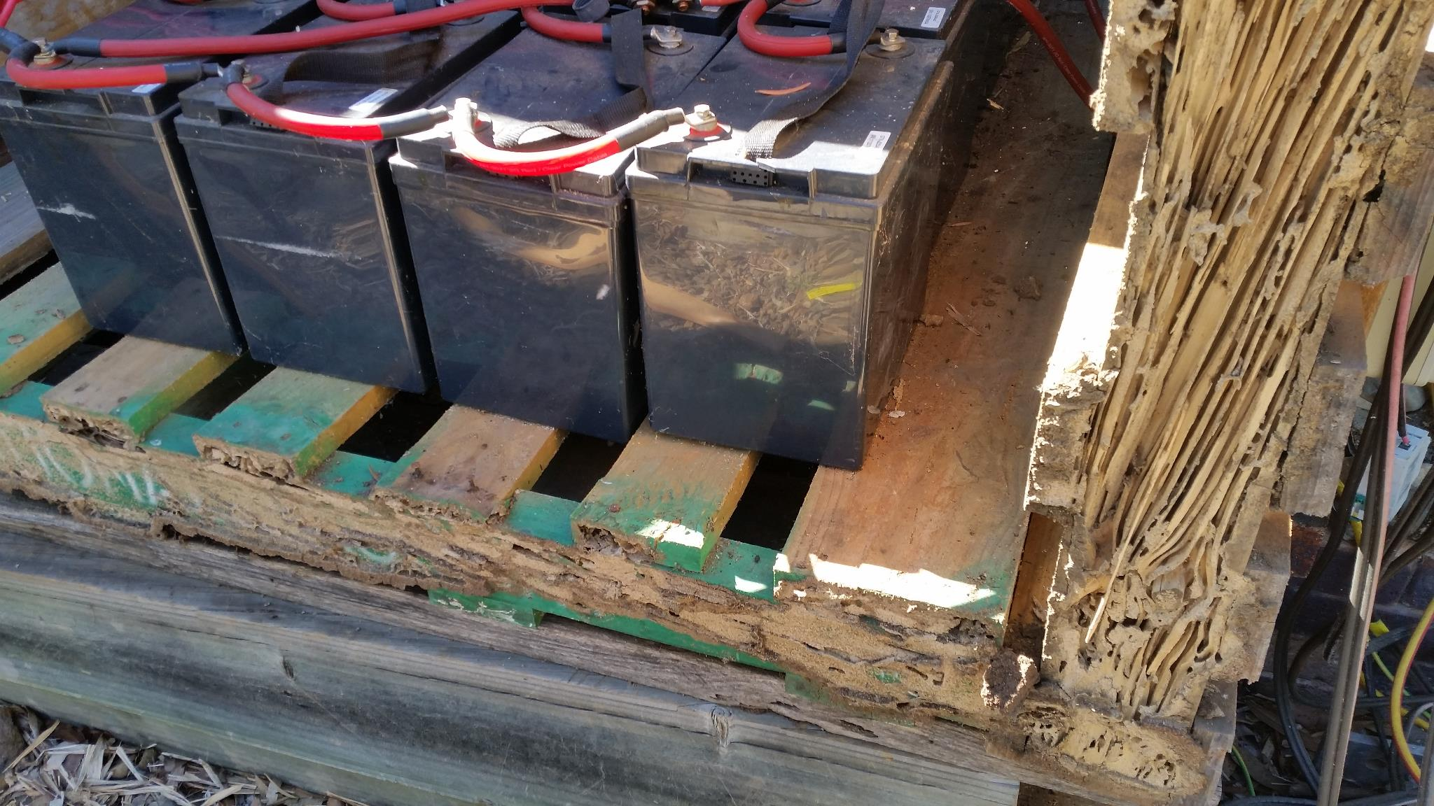 Termites in the Solar Box