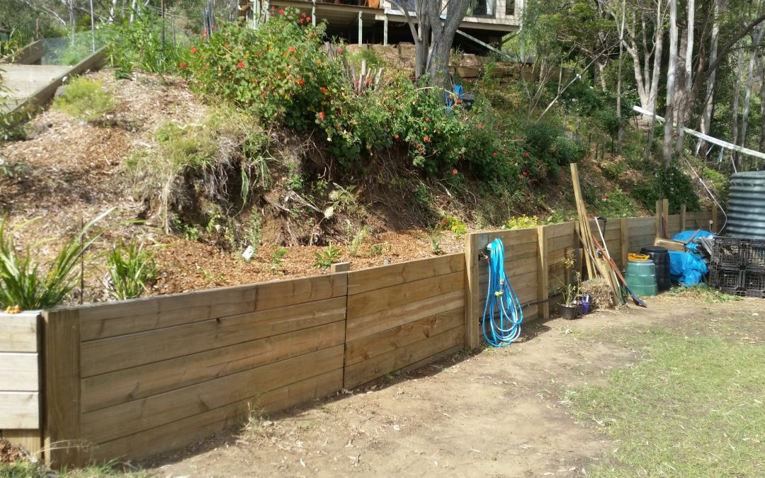Finishing off the Grevillea garden – Tank Level – 26th August 2017