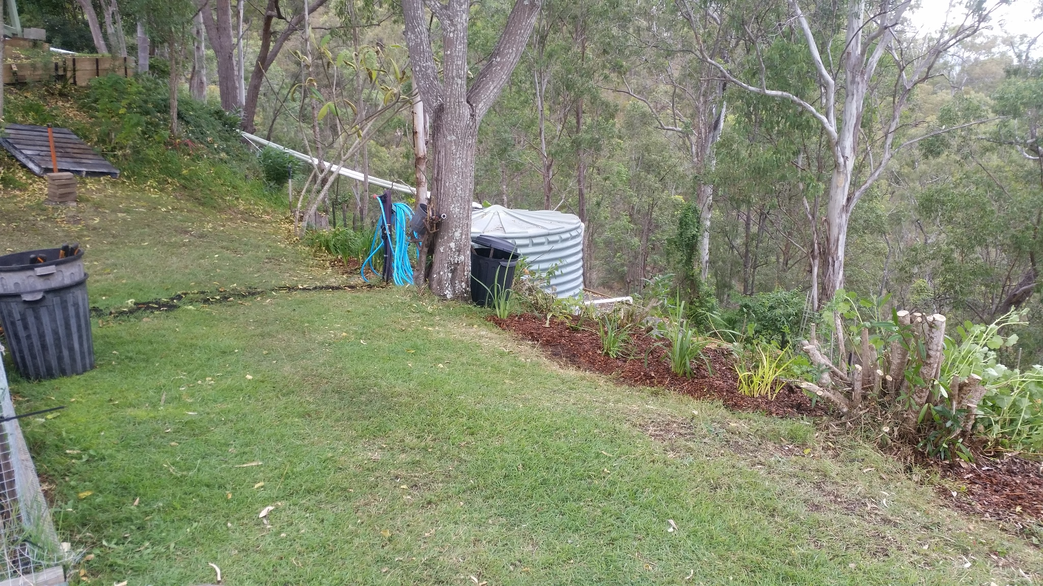 New Plot Garden