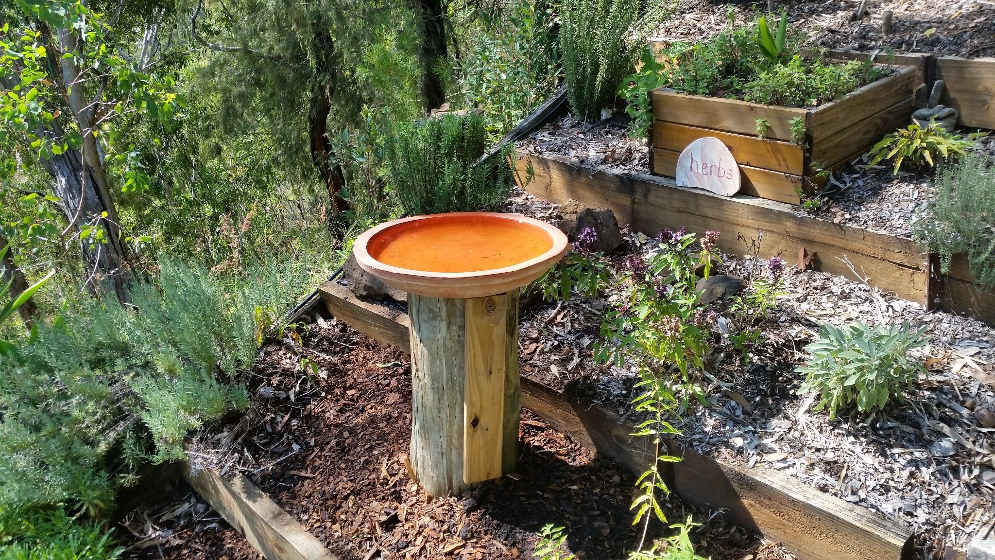 New Water Habitat