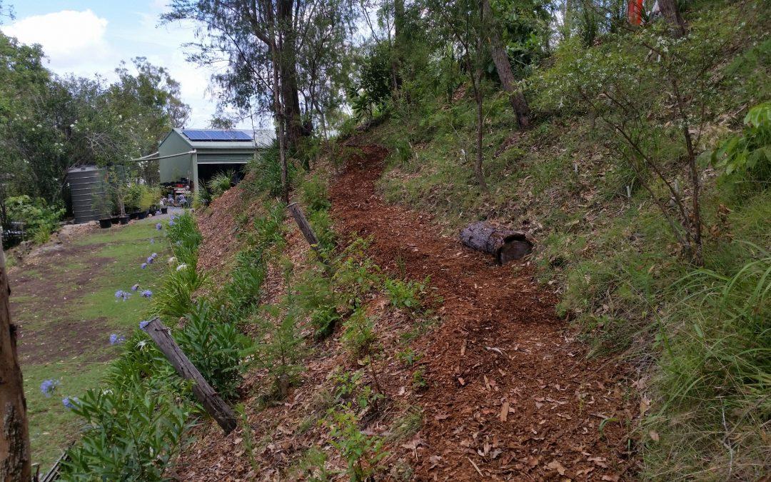Callistemon Path maintenance – 1st January 2019