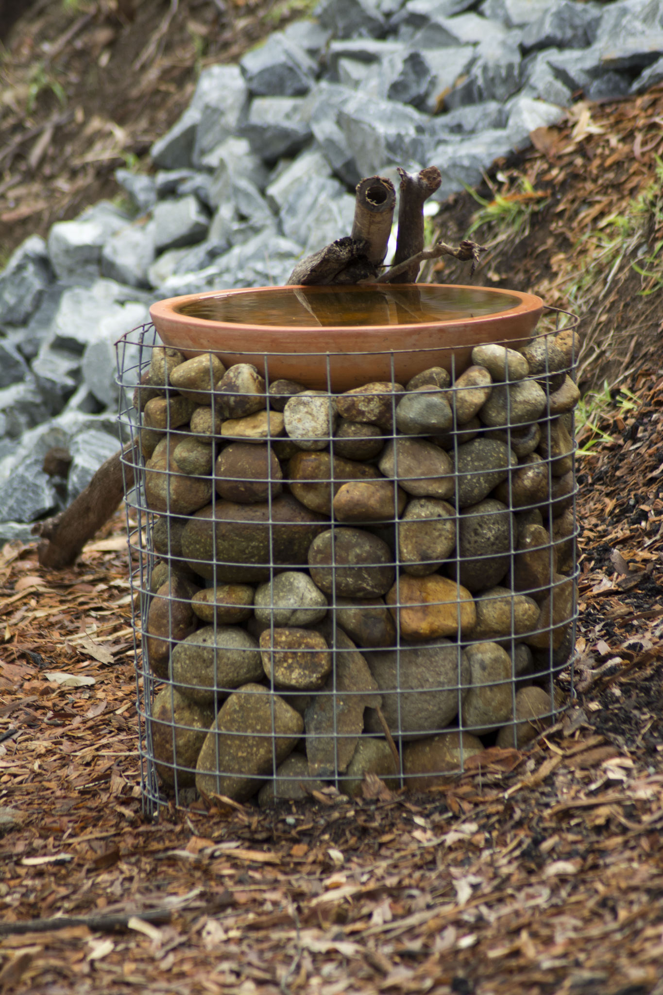 Our new 'gabion' water habitat