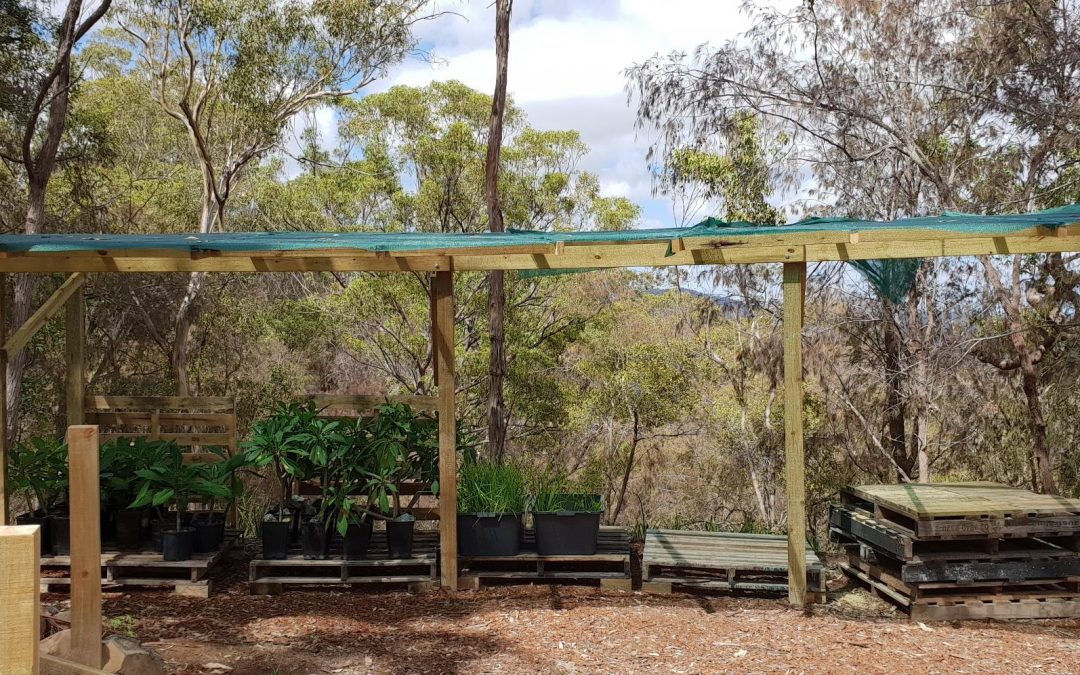 Tidying up the Shade Cloth – 9th March 2019