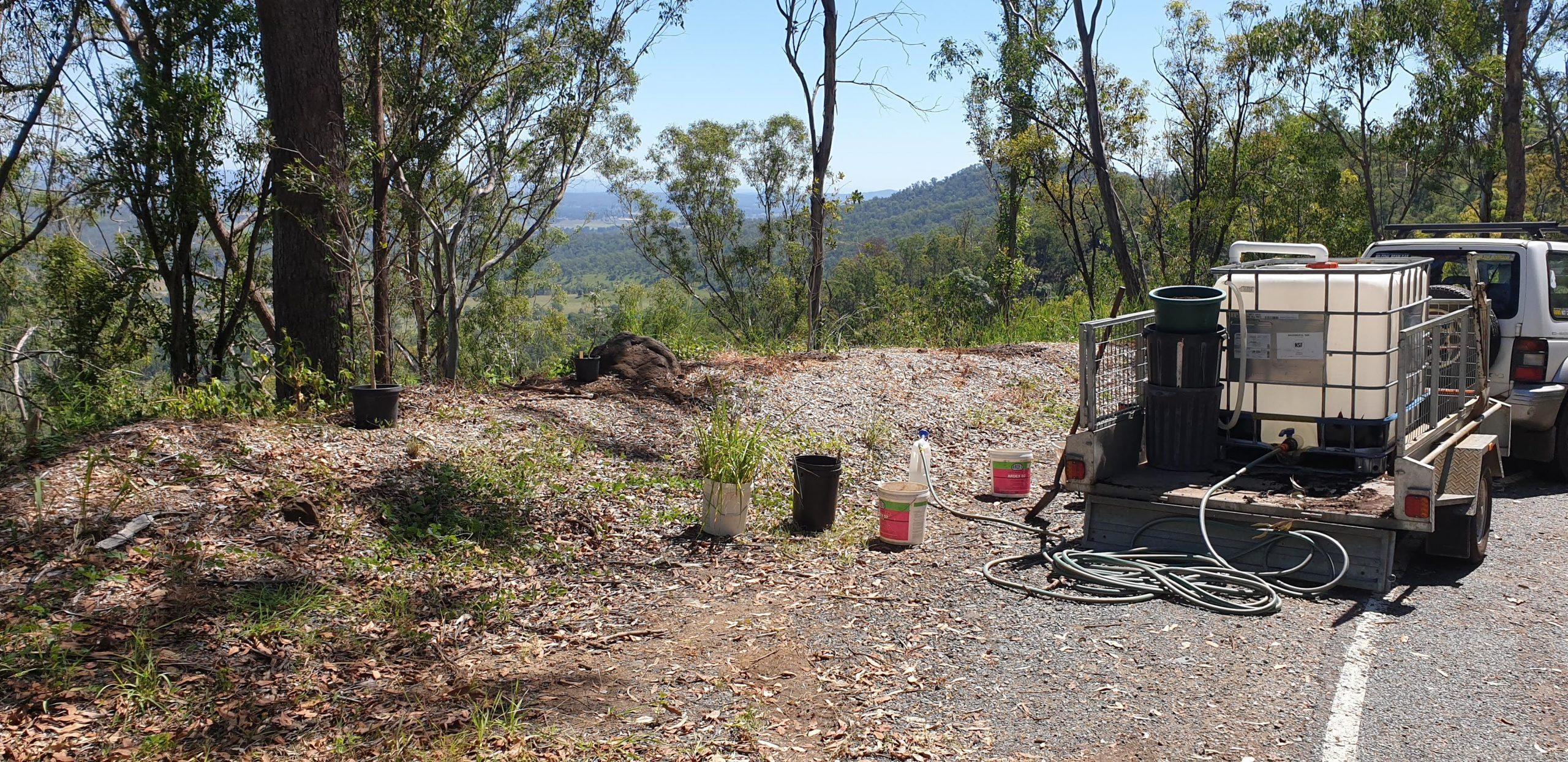 Planting Site 67