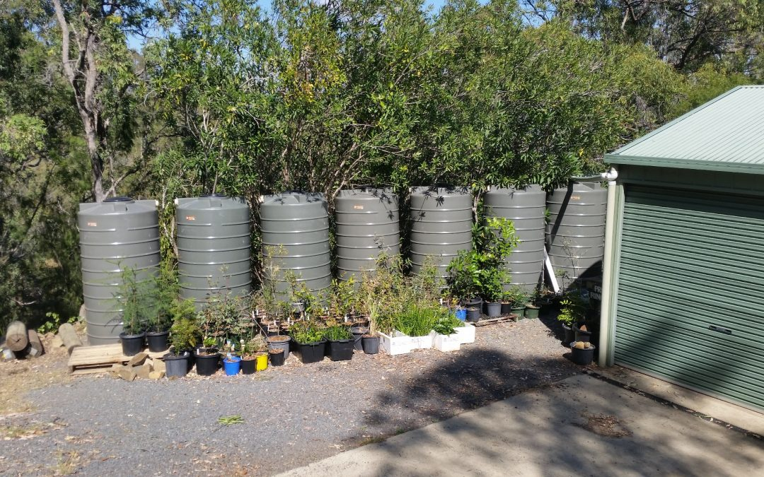 Increasing our Water Storage – 25th August 2017