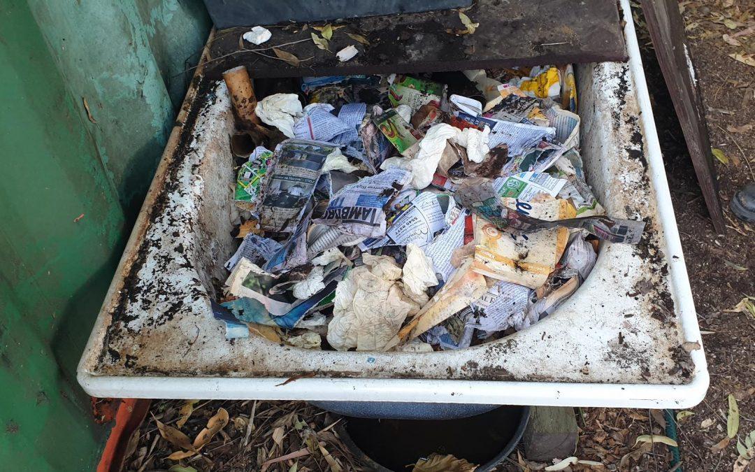 Reloading the Bath Worm Farm – 26 July 2019