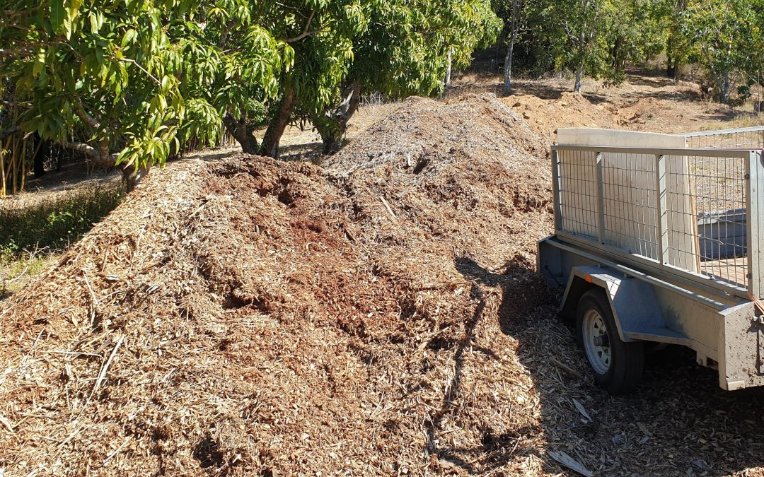 Heavy Mulching Continues – 21st August 2019